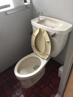 ハイホーム巣鴨1階トイレ1.JPG